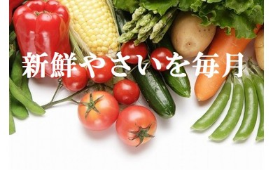 ve003 旬の野菜詰め合わせコース(年12回 毎月発送!!)
