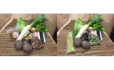D13-1 フードプラン厳選 仁淀川町の野菜セット