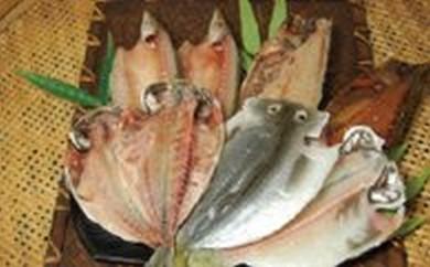 5. 魚伝特製 地魚干物セット