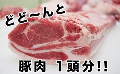 東松島産 豚肉一頭分オーダーカット!!(なんと50kg)