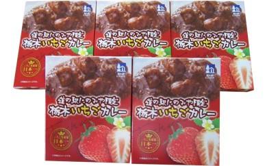 Z003 栃木県真岡産「とちおとめ」使用いちご畑の芳熟カレー【25pt】