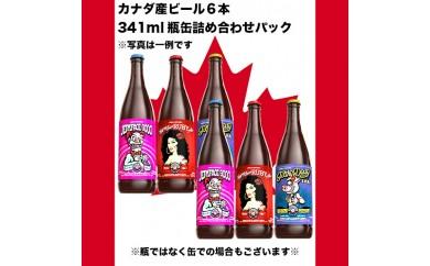 AJN06 話題のカナダ産クラフトビール 6本入り