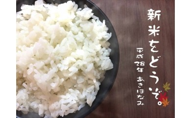 A-108 29年産!有明町産「あきほなみ」甚兵衛米10㎏!