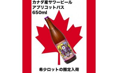 AJN05 あんずを使った爽やかなカナダサワービール!
