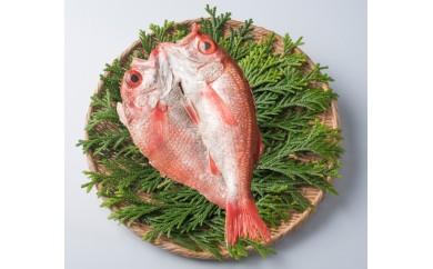 【B15】海の宝石!高級魚「のどぐろ」大物一夜干し