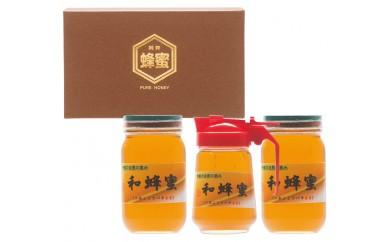 056-02和蜂蜜(ニホンミツバチ)  13,000pt