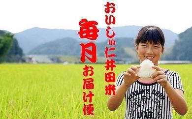 Rbc-02 【お米毎月お届け便】お米本来の味に感動!武吉米穀店の仁井田米 5㎏/月 計12回