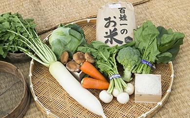 010-002 石井町産美味しい野菜&お米(5㎏)の詰め合わせセット