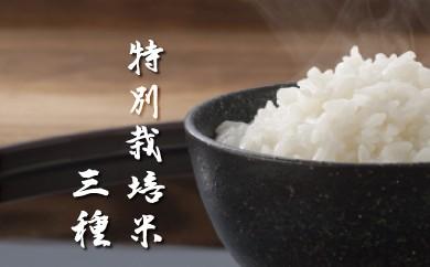 C-20 最高品質 特別栽培米3種食べ比べ 5kg×3種セット