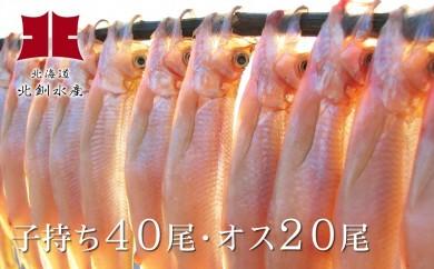 [Ho201-C002]ししゃも釧路産(メス40尾・オス20尾)