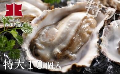 [Ho202-A016]生牡蠣10個入(釧路管内産特大サイズ120g~150g)