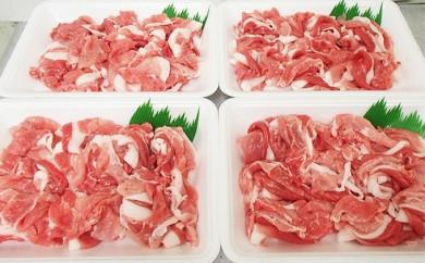 [№5718-0119]市ばん豚 モモ・カタ切り落とし 1.6kg(400g×4)