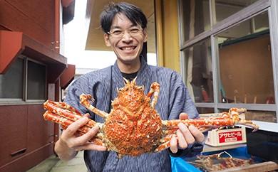 活タカアシガニ 2杯2.4kg【お得なワケあり】