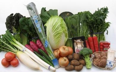 [№5803-0088]産直あきんどの厳選お野菜と旬の果物の詰め合わせ