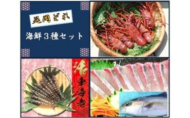 (C-6)年末限定 延岡どれ海鮮3種セット