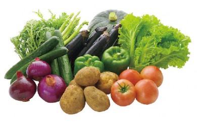 011-01旬の野菜セット  2,000pt