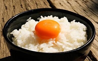 Gb-02 情熱のろべるとでTKG!!「プレミアム 金のシャリ」卵かけご飯セット!