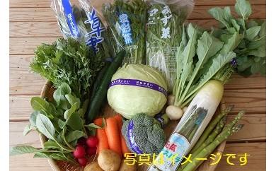 29A045 草津あおばな館農産物詰め合わせ