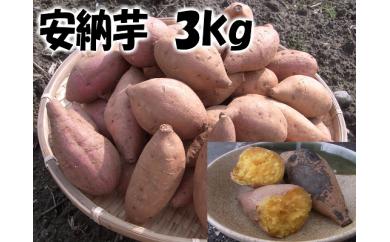 A133 あま~い!安納芋 約3kg