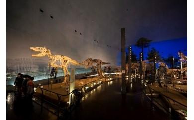 福井県立恐竜博物館年間パスポート(福井県外の方限定)