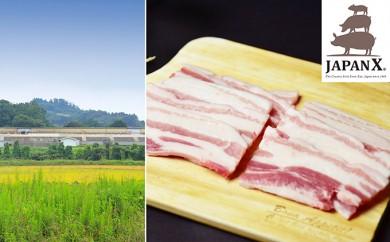 [№5800-0066]宮城蔵王産  牧場直送 JAPAN X 豚バラ・焼肉用/計2kg