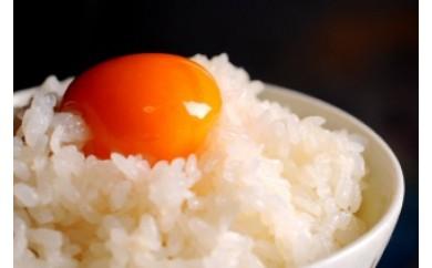 A-14 ネッカリッチ赤たまご「児湯一番」(1箱20個)【2,000pt】