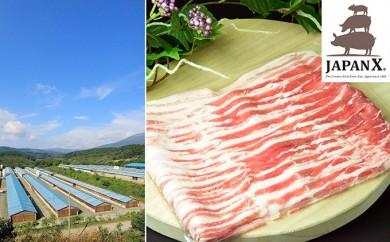 [№5800-0063]宮城蔵王産 牧場直送 JAPAN X 豚バラ2mmスライス/計2kg