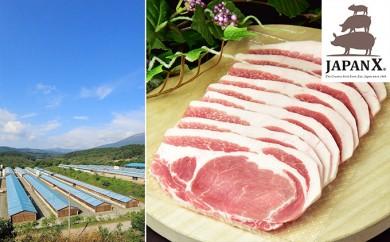 [№5800-0067]宮城蔵王産 牧場直送 JAPAN X 豚ロース・焼肉用/計1.5kg