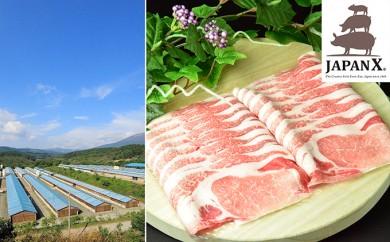 [№5800-0065]宮城蔵王産  牧場直送 JAPAN X 豚ロース2mmスライス/計1.5kg