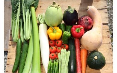 【年末だけの限定】毎月の野菜便り『高知の野菜12回お届け定期便』♪♪