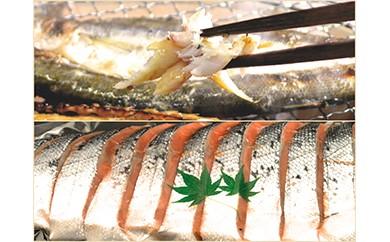 AN95 焼くだけで食べられるお魚(かます&甘塩鮭)セット【120p】