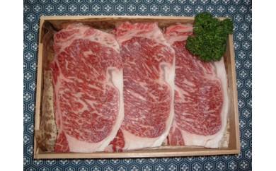 30-2 丹波牛(京都肉)特選サーロインステーキ