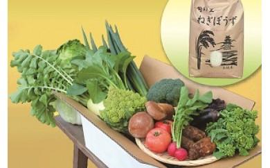季節の野菜・農産物セット(お米付き)