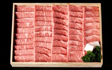 [№5905-0038]A5飛騨牛焼肉用約500g