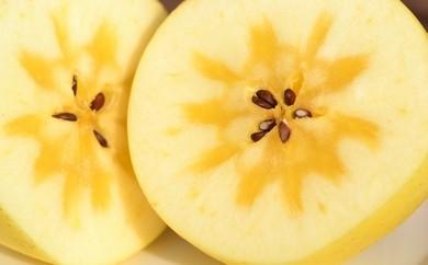 高級りんご「はるか」【青森県・三戸町産】【H30.12.1発送開始】