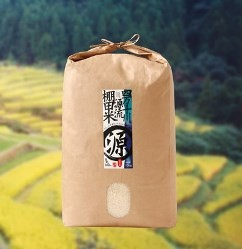 AG02【8p】四万十川源流棚田米(5kg)(津野山農業協同組合)