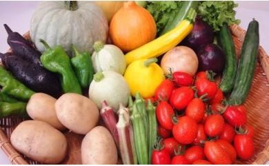 AE01【16p】季節の彩り野菜セットA(株式会社 雲の上ガーデン)