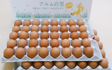 [№5765-0061]赤玉ネッカリッチ卵 80個入り