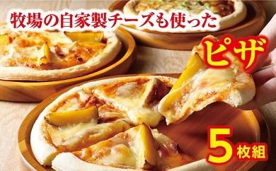 A31-3 ハッピネスピザ5枚組