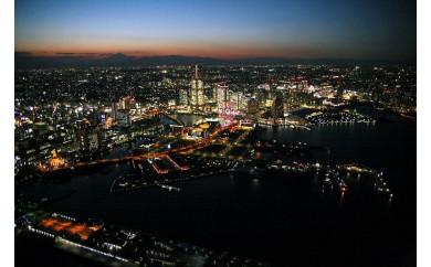 C-5 横浜スカイクルーズGoldコース(夜10分)ペアチケット
