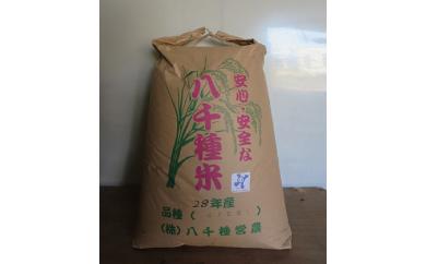 B013 八千種米30kg(玄米)