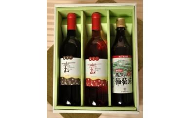 B-25 ひるぜんワイン・赤&ロゼと葡萄液セット(寄付額20,000円)