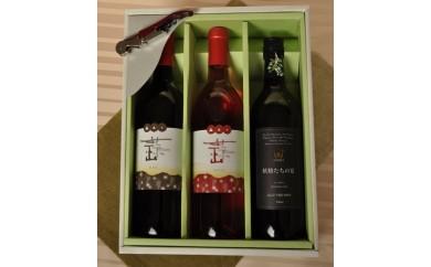C-22 ひるぜんワイン・赤&ロゼとヤマブドウ100%果汁「妖精たちの宴」のセット(寄付額30,000円)