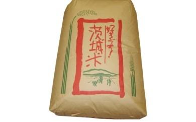 取手市産 コシヒカリ 玄米30kg