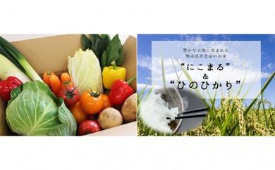 [№5773-0030]合志の旬のお野菜とお米の食べくらべセット