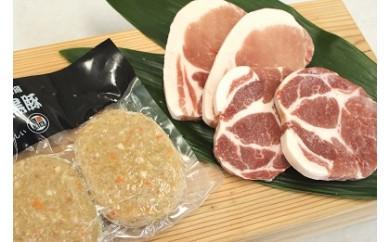 430 薩摩黒豚ステーキ&ハンバーグセット