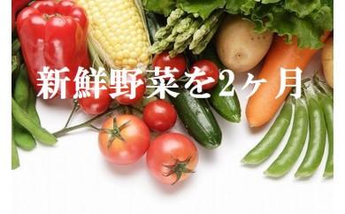 ve015 新鮮!シャキシャキ!旬の野菜詰め合わせ(2ヶ月連続発送!) 寄付額8,000円