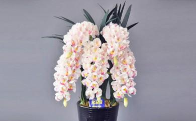 [№5809-1062]光触媒アートフラワー(造花)シンピジウム 白・ピンクM5本立