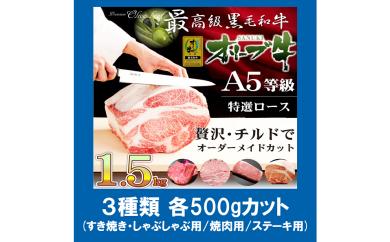 【G-214】(3種類各500gカット)特選A5等級オリーブ牛1.5キロ選べるカット