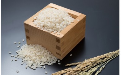 A⑨【平成30年産 新米】新潟県産コシヒカリ(県認証特別栽培米)「甘うまミネラル米 獅子米」精米5㎏